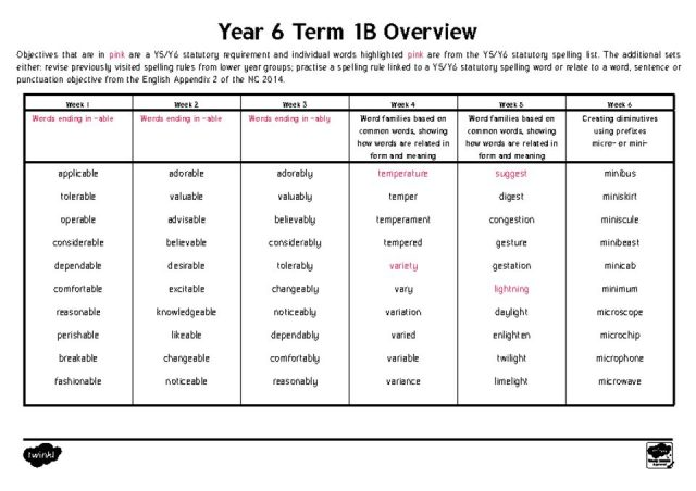 thumbnail of Year 6 Term 1B – Overview