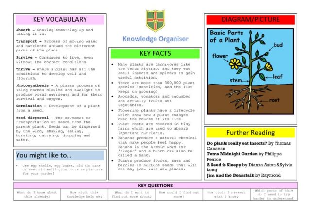 thumbnail of Knowledge organiser Plants